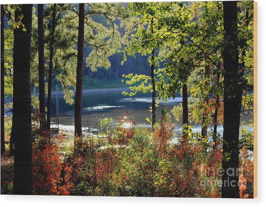 A Peek At Lake O The Pines Wood Print