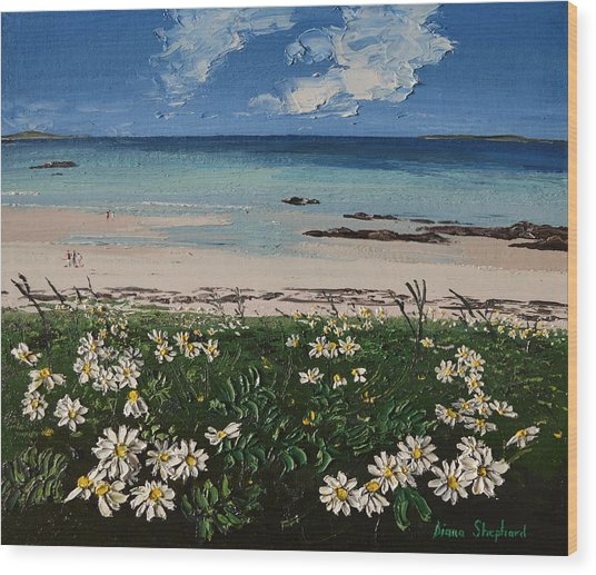 A Perfect Day At Coral Strand Connemara Ireland Wood Print