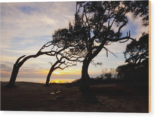 A Place To Watch The Sunrise Wood Print by Michael Ray