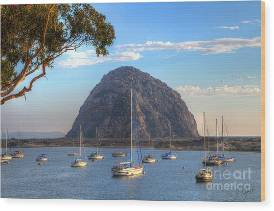 A Pleasant Day In Morro Bay Wood Print