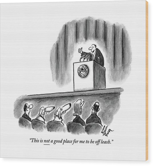 A Politician Irritates A Dog In The Audience Wood Print