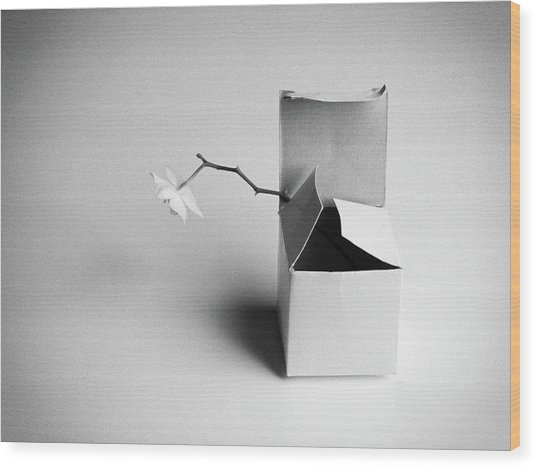 A Present Wood Print