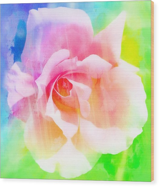 A Rainbow Of A Rose Wood Print by Cathie Tyler