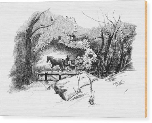 A Ride Through Central Park Wood Print