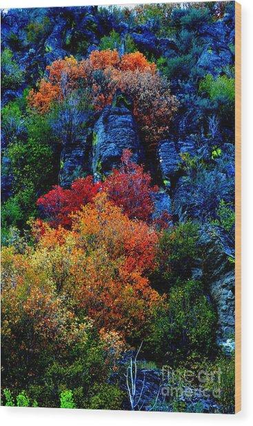 A Riot Of Color Wood Print
