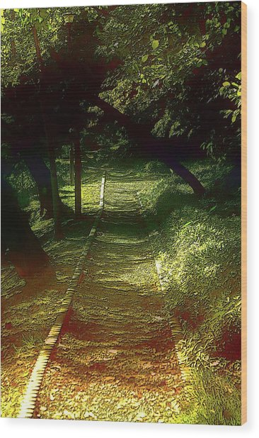 A Road Less Travelled Wood Print