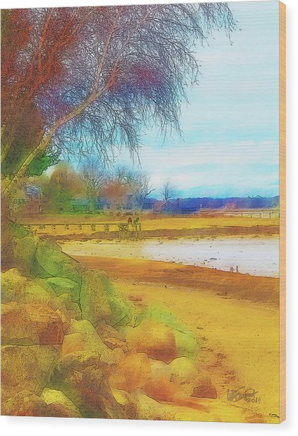A Rocky Beach Wood Print
