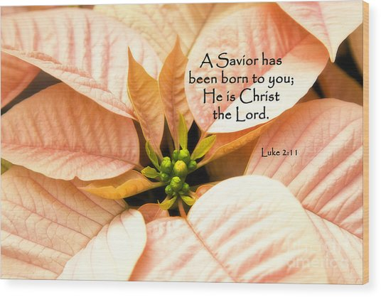 A Savior Has Been Born To You He Is Christ The Lord Wood Print