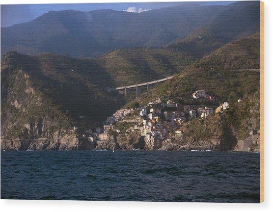 A Sea View Of Riomaggiore Wood Print