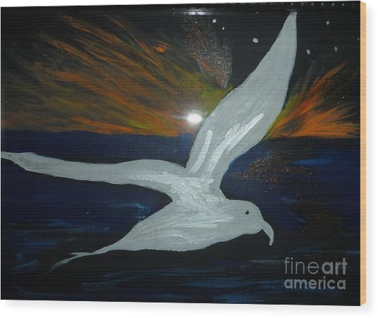 A Seagull At Night Wood Print by Marie Bulger