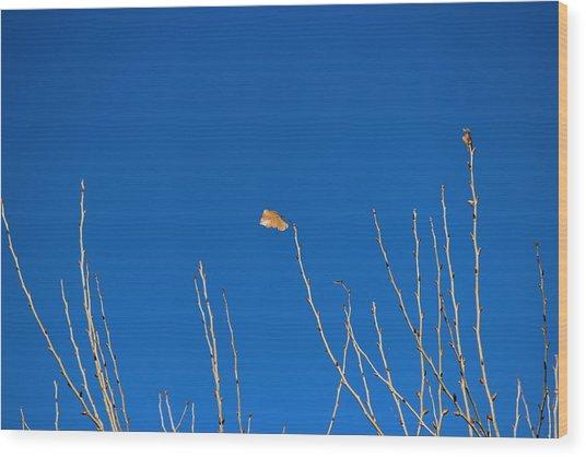 A Single Leaf Wood Print
