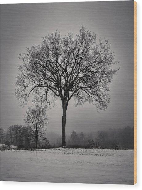 A Snowy Glow Wood Print