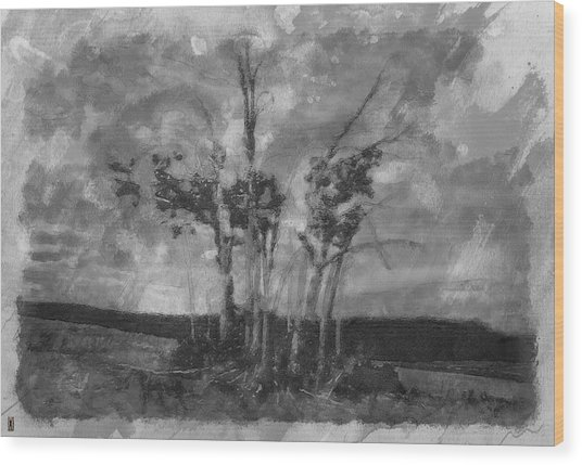 A Stand Of Autumn Trees Wood Print