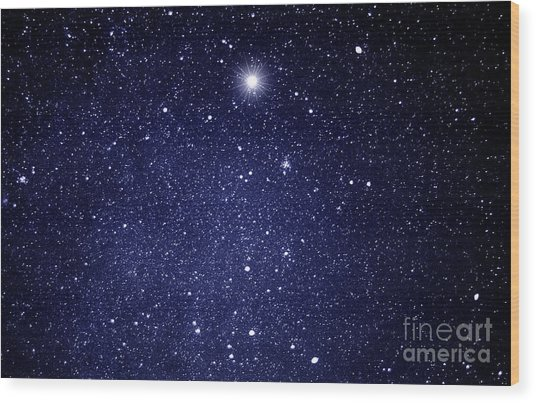 A Star Appeared In The East... Wood Print