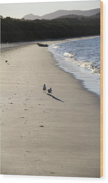 Wood Print featuring the photograph A Stroll Along The Beach by Debbie Cundy