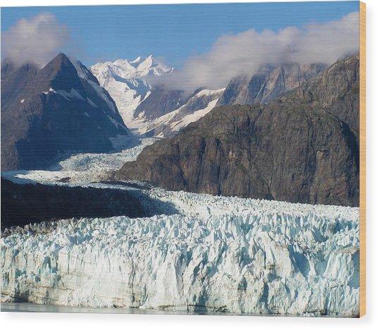 A Sunny Day In Glacier Bay Alaska Wood Print