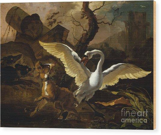 A Swan Enraged By Hondius Wood Print