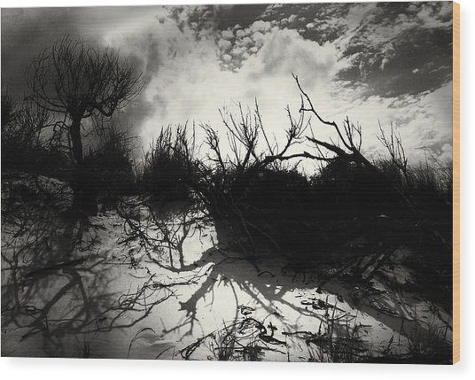 A Symphony Of Light And Shadows Wood Print