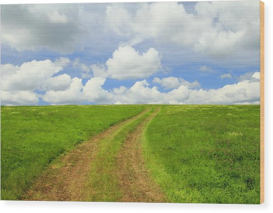 A Trail To The Horizon Wood Print
