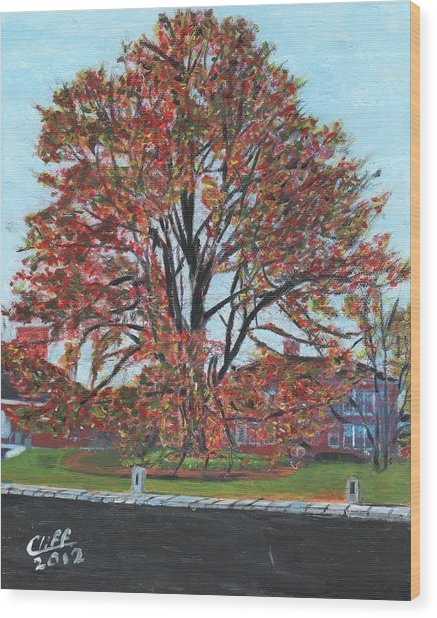 A Tree In Sherborn Wood Print