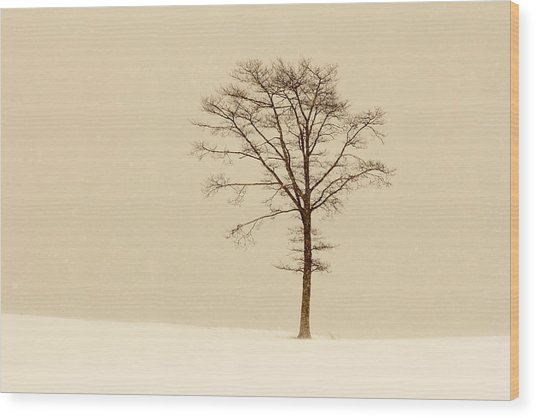 A Tree On A Hill In A Snow Storm Wood Print