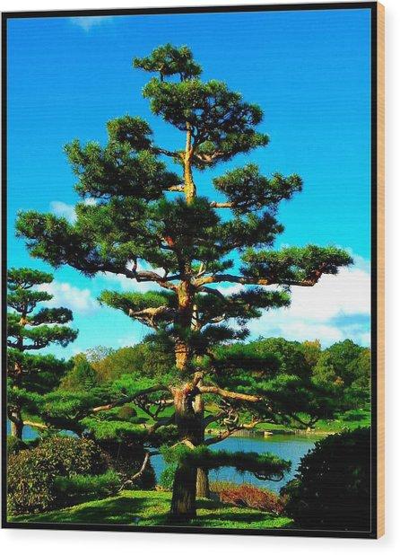 A Tree... Wood Print