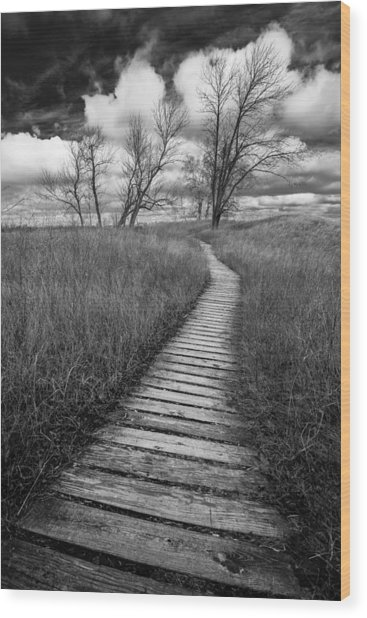 A Tree's Road Wood Print