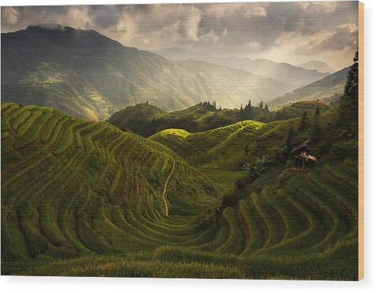 A Tuscan Feel In China Wood Print