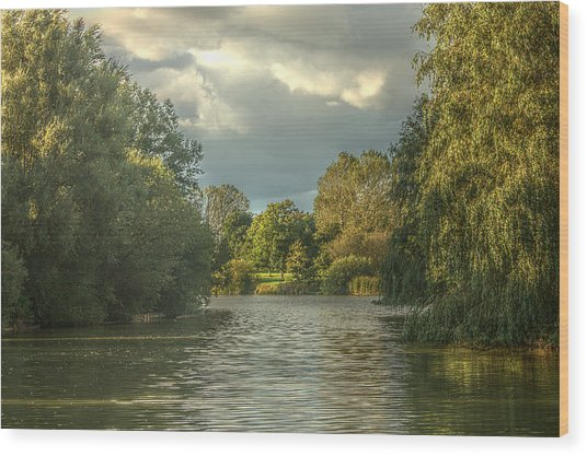 Wood Print featuring the photograph A View Down The Lake by Jeremy Hayden