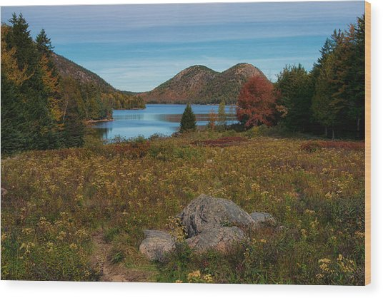 A View Of Jordan Pond Wood Print