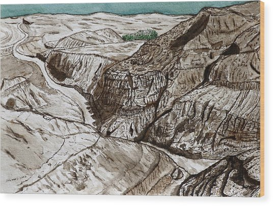 a view to the Dead Sea. Wood Print