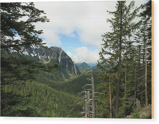 A Vista - Mt. Rainier National Park Wood Print