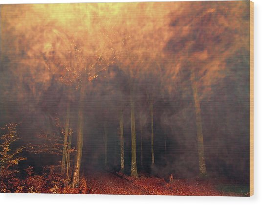 A Waking Dream. Wood Print