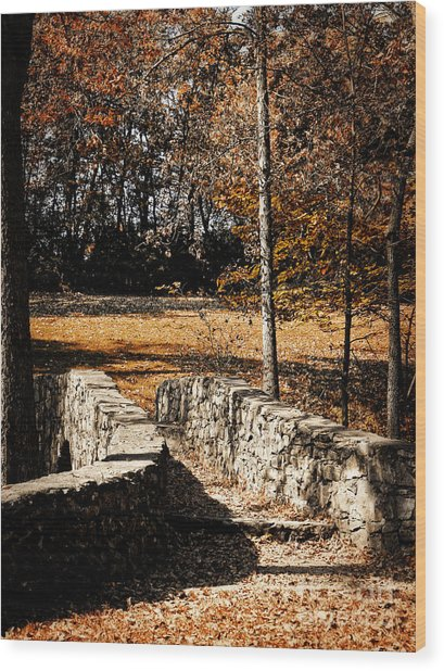 A Walk Along The Old Stone Path Wood Print