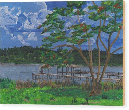 A Walk By Lake Clay Wood Print