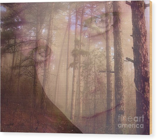 A Watchful Forest Wood Print