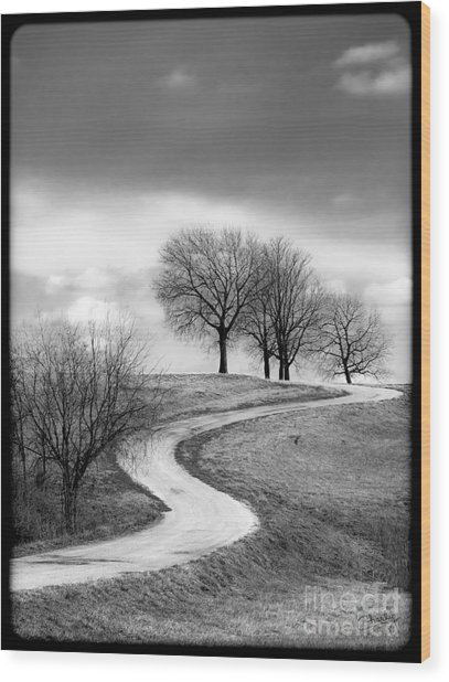 A Winding Country Road In Black And White Wood Print