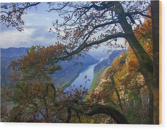 A Window To The Elbe In The Saxon Switzerland Wood Print