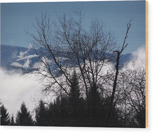 A Winter Day Reaching For The Sky Wood Print