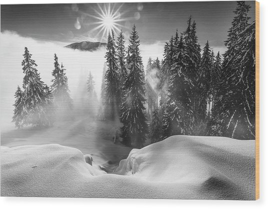 A Winter Tale ! Wood Print