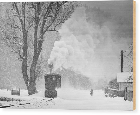 A Winter's Tale Wood Print by Sorin Onisor