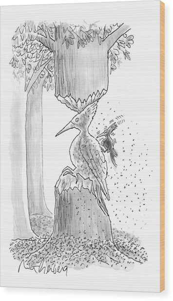 A Woodpecker Is Using His Beak To Carve Is Own Wood Print