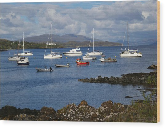 A Yachting Haven Wood Print by Veron Miller