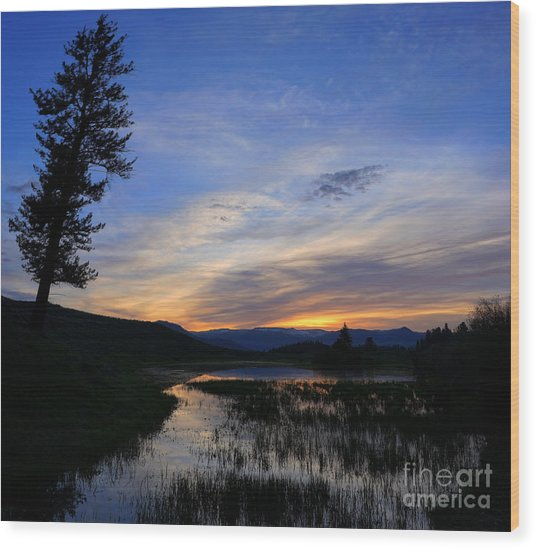 A Yellowstone Lake Before Sunrise Wood Print
