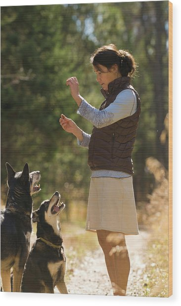 A Young Woman Gives Her Dogs Treats Wood Print