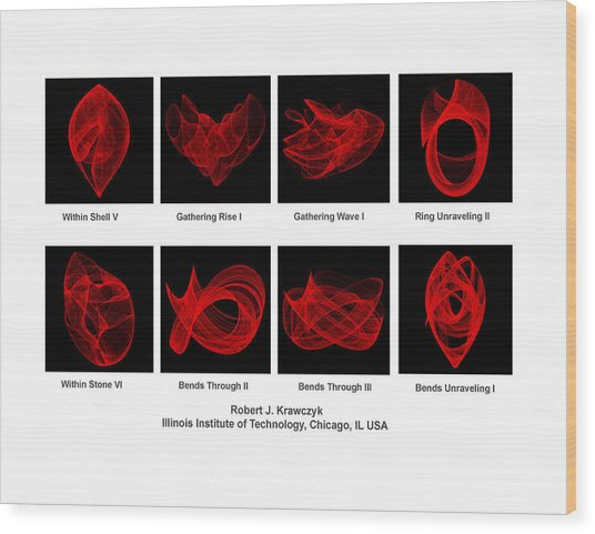 Aaas Exhibit Wood Print