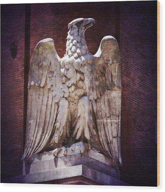 Ab Eagle St. Louis Brewery Wood Print
