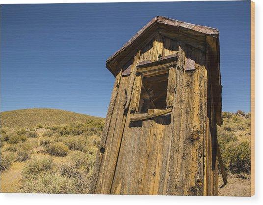 Abandoned Outhouse Wood Print