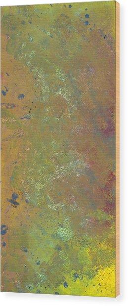 Abstract 4 Wood Print by Corina Bishop