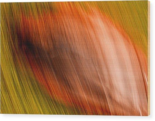 Abstract #5 Wood Print